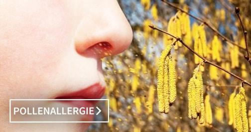 Luftreiniger bei Pollenallergie